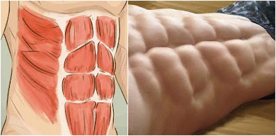 Basic Exercises For Six Pack Abs That You Must Try It Today