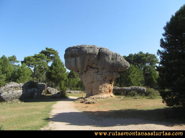 Ciudad Encantada: Formación en forma de árbol sin nombre