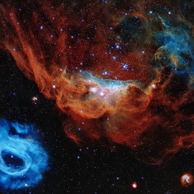 Emission Nebulae NGC 2014 and NGC 2020