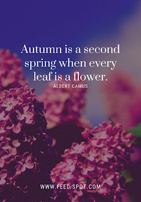 Autumn is a second spring when every leaf is a flower. __ Albert Camus