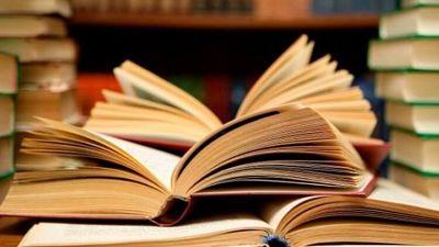Türk edebiyatında ilk natüralist roman hangisidir?