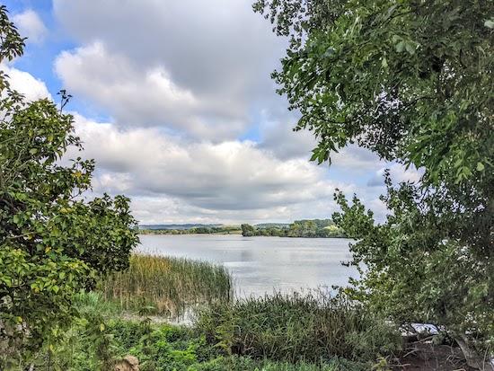 Wilstone Reservoir towards the end of the walk