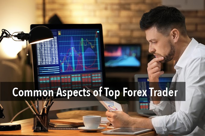 Common Aspects of Top Forex Trader