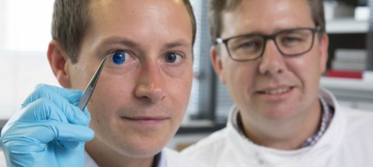 Worlds first 3d printed cornea ever made