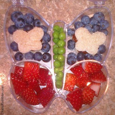 cute butterfly bentos basics