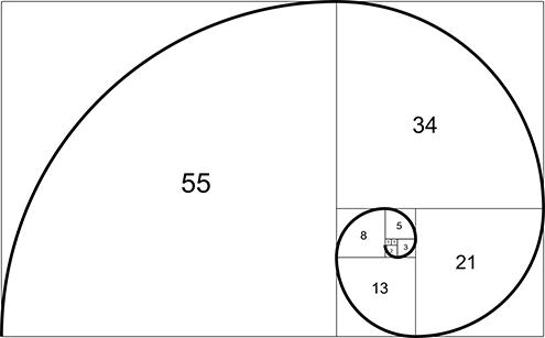 ilustracion de la espiral de fibonacci (fibonnaci sequence), sucesión de fibonacci, secuencia de fibonacci, o también llamada espiral dorada; todo ello con fondo blanco 8