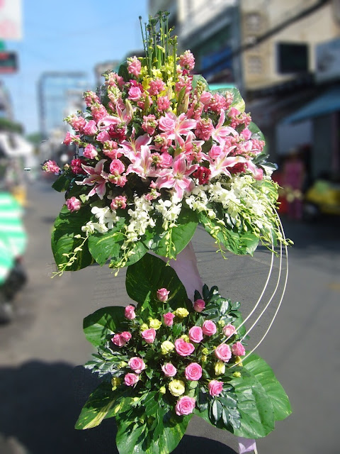 Hoa mung khai turong dep