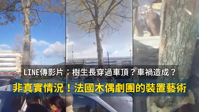 樹木穿過汽車生長 車禍 謠言 影片 轎車 藝術