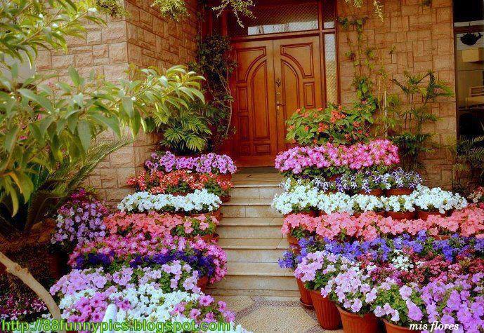 Amazing Flower Garden Pictures Beautiful Flowers Garden Images