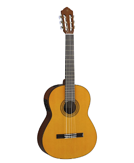 CGX102 Acoustic-Electric Guitar