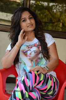 Actress Madhavi Latha Latest Stills at Swachh Hyderabad Cricket Press Meet  0040.JPG