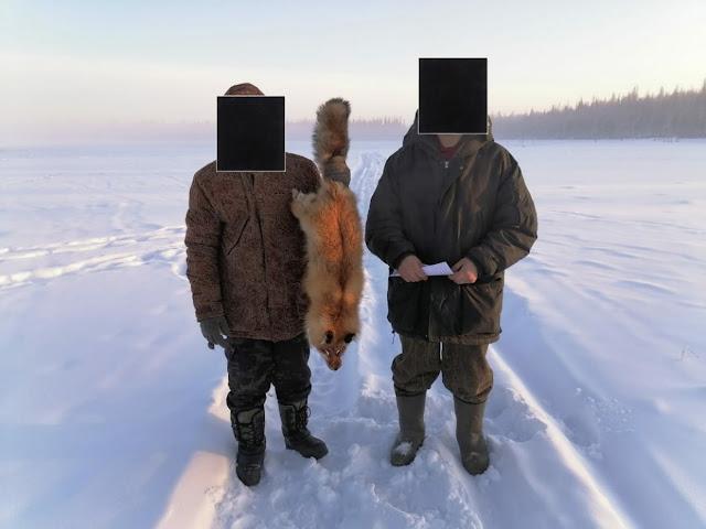 Убивал и улыбался. Жители Якутии сняли на видео жестокую расправу над лисой