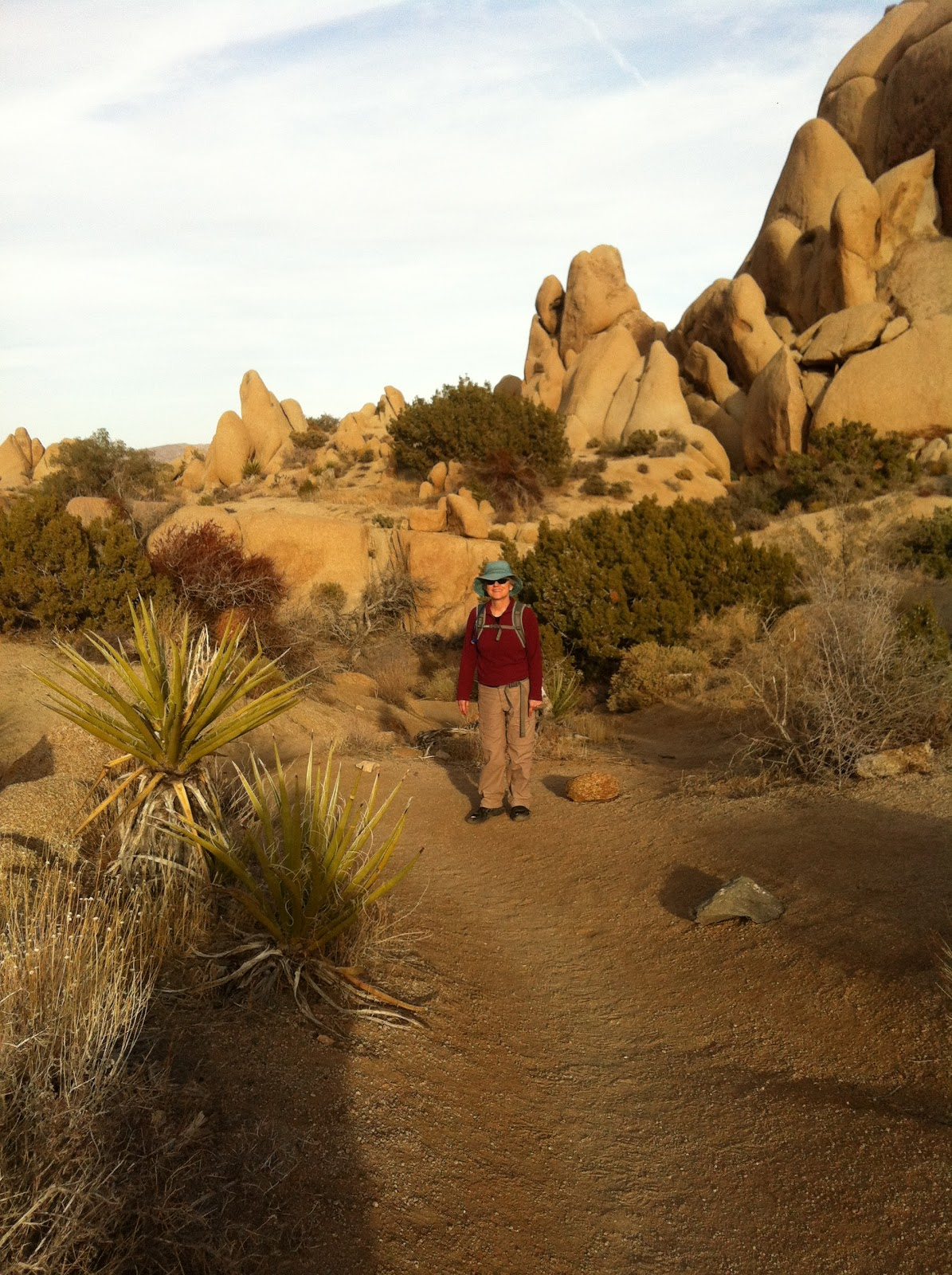 All This Is That At Skull Rock In Joshua Tree National Park