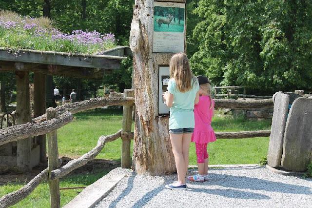 Gastbeitrag: Wie motiviert man seine Kinder zum Spazierengehen? Wandern Laufen Motivation motivieren Familie mitkommen