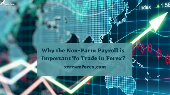 Why the Non-Farm Payroll is Important To Trade in Forex?