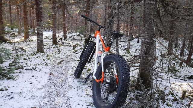 Moose Bicycle Moose 3 Fat Bike Review Fatbike Republic Bluto Snowshoe XL Shimano 615