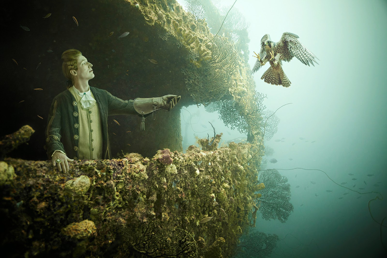 09-Andreas-Franke-Surreal-Artificial-Reef-Photography-www-designstack-co