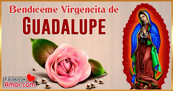 imágenes de la virgen de Guadalupe