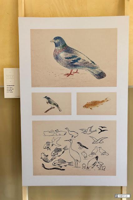 【大叔生活】重返大稻埕,窺探百年前日本小學生美學培養 - 鴿子和魚,是四年級小朋友臨摹的對象