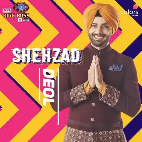 Shehzad Deol Bigg Boss 2020 Contestant 7