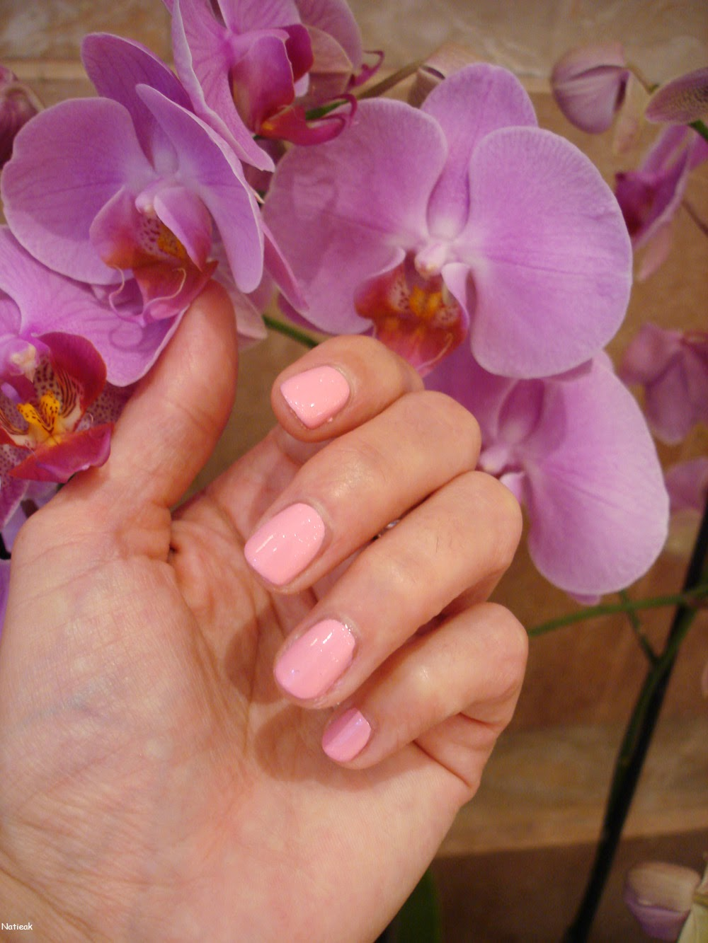 vernisà ongles rose dragée (numéro 62) de la marque Couleur caramel