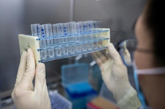 Empresa dos EUA anuncia resultados 'positivos provisórios' de vacina contra Covid-19