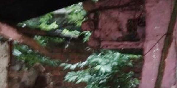 तेज बारिश से मकान के एक हिस्से की दीवार ढही, करीब 30 हजार रू. का हुआ नुकसान
