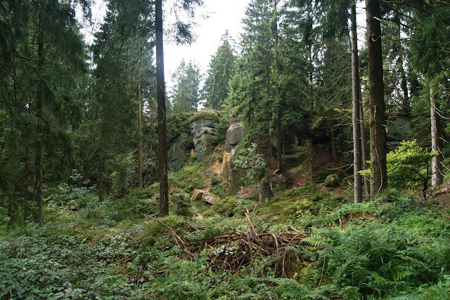 Auf dem Weg kommt man kurz vor dem Gipfel an rauer und wilder Natur vorbei