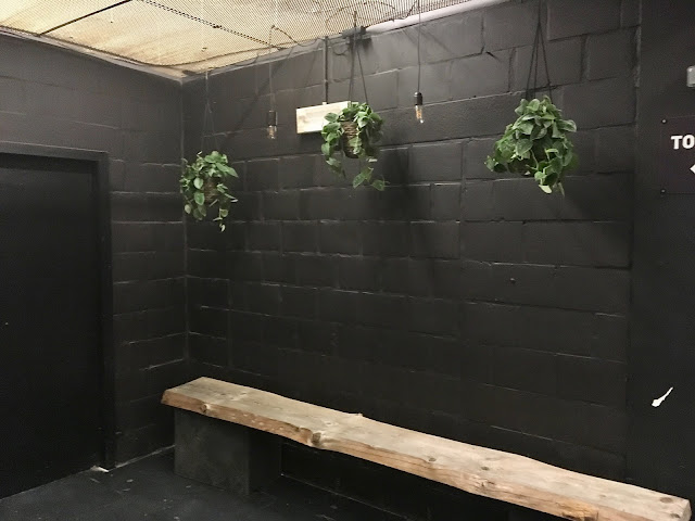 Hangplanten in hangpotjes met scandens en scindapsus planten voor event party festival feestje receptie