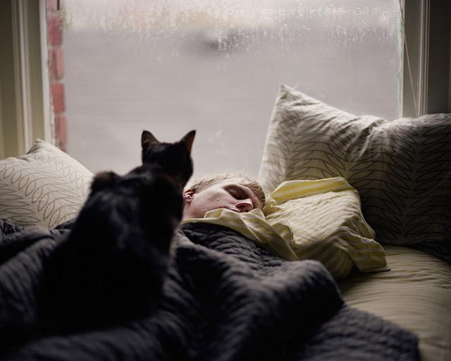 tidur dengan kucing