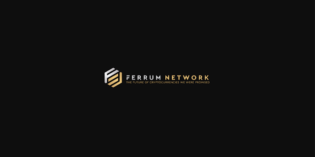 Image result for ICO Ferrum Network