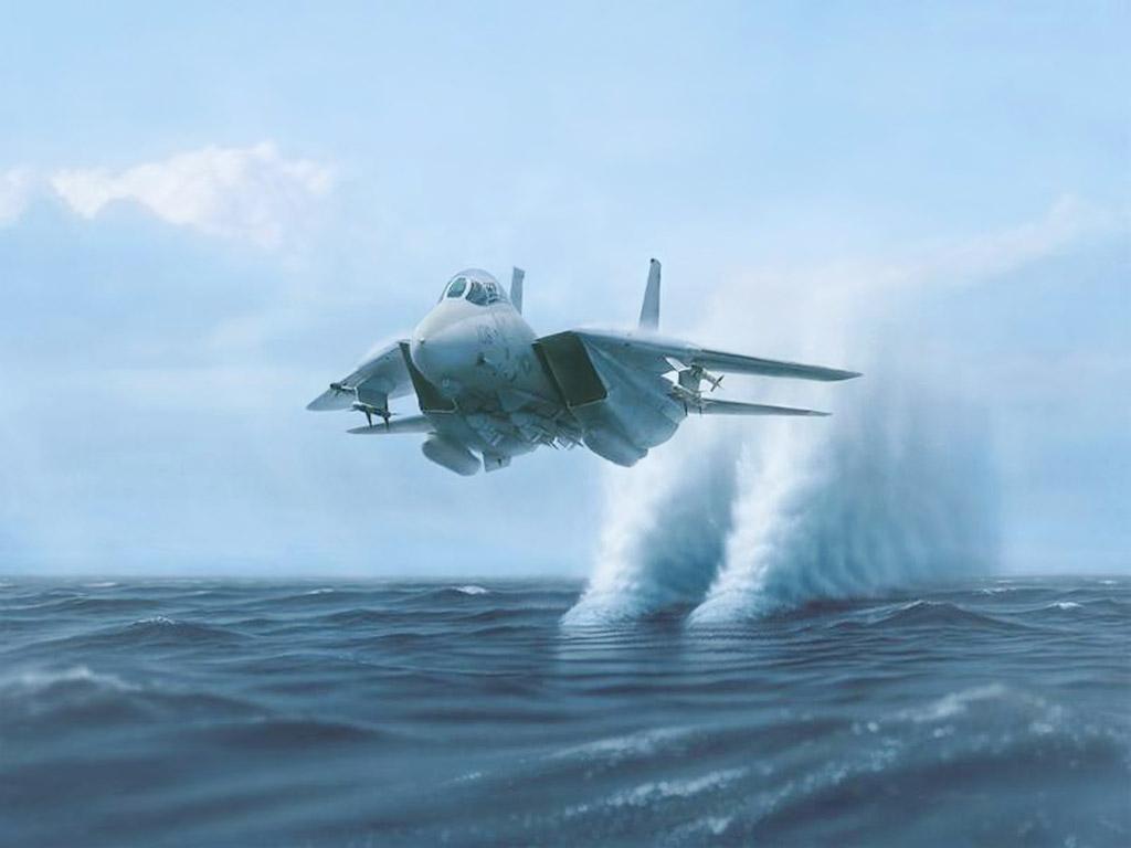 14 tomcat jet fighter - photo #2
