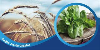 Sağlık Dostu Gıdalar