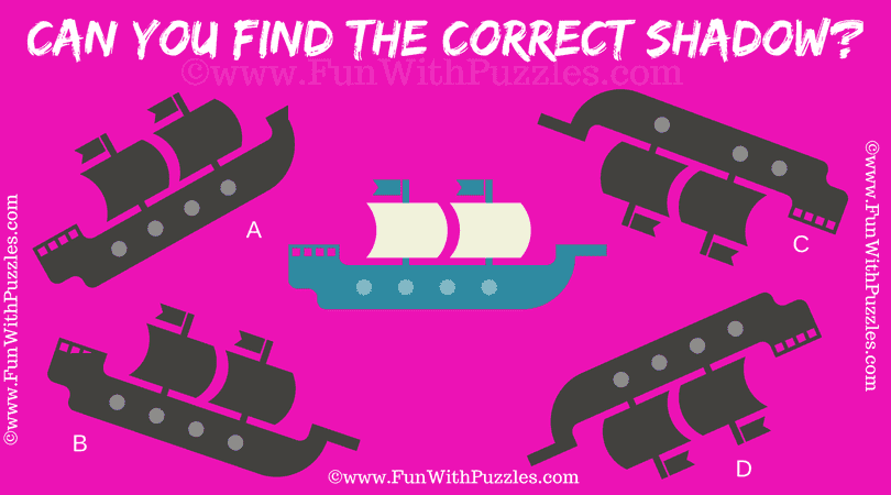Can you find the Correct Shadow in this Picture Puzzle?