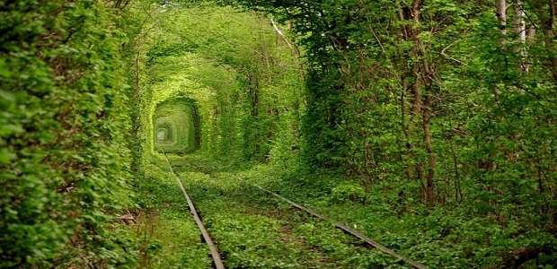 Tunelul Dragostei din Ucraina. Comparativ cu Tunelul Dragostei din Caraș-Severin