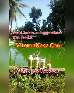 agen-nasa-di-waeapo-buru-085232128980