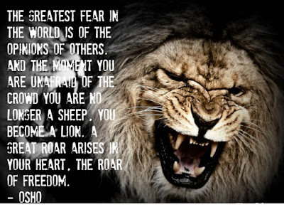Lion Fight Quotes