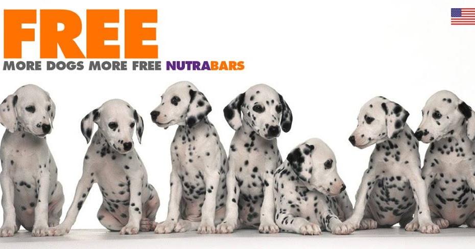Diamond Naturals Dog Food Mailing Address