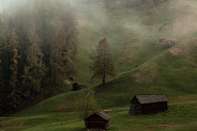 Grass houses