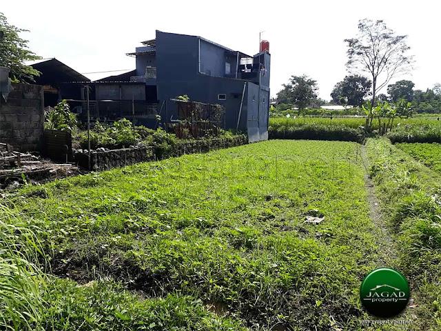 Tanah Sawah jalan Magelang Km 17