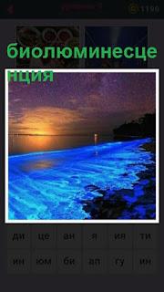 655 слов весь берег усыпан светящейся биолюминесценцией 9 уровень