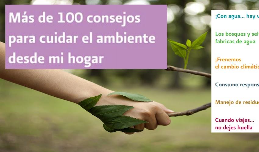 Más de 100 consejos para cuidar el ambiente