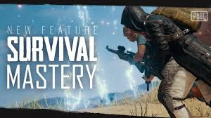 PUBG PC- SURVIVAL MASTERY