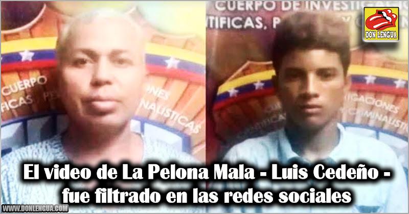 El video de La Pelona Mala - Luis Cedeño - fue filtrado en las redes sociales
