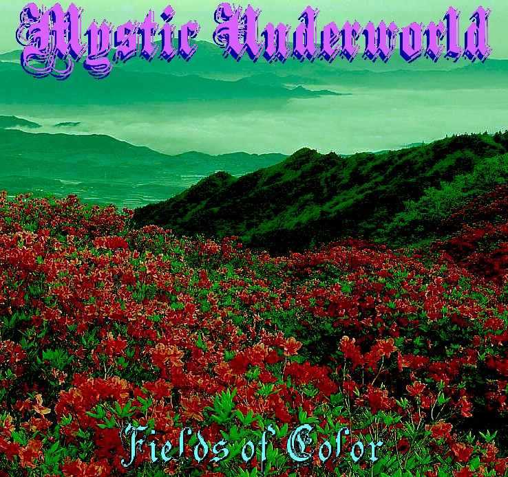 Fields of Color Front Cover