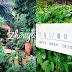 【桃園】中壢交流道旁森林系網美咖啡舘,多肉花園的光源62