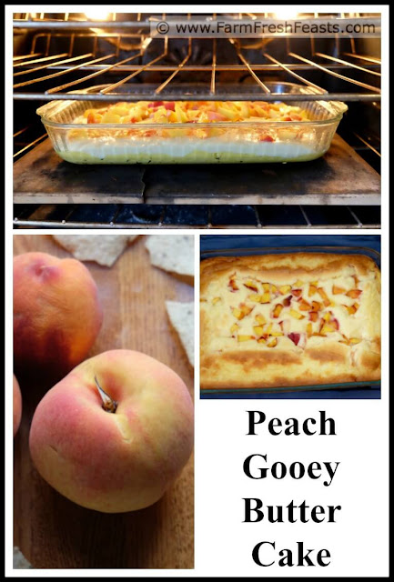 a collage of photos showing peaches and peach gooey butter cake