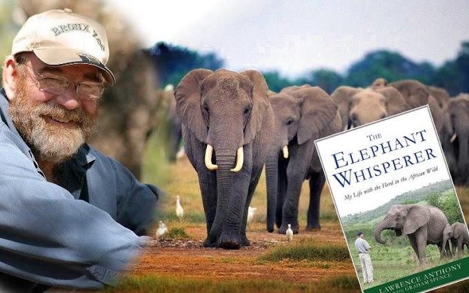 Lawrence Anthony İçin Yas Tutan Filler
