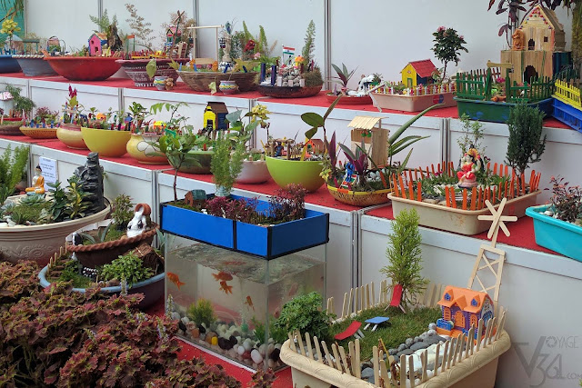 Miniature Gardens were on display outside the glass house