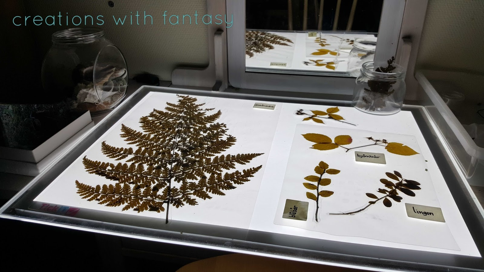 creations with fantasy light table u0026 nature